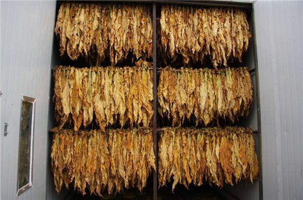河南1500个烟草烘干房要改造 空气源热泵或将在考核中脱颖而出