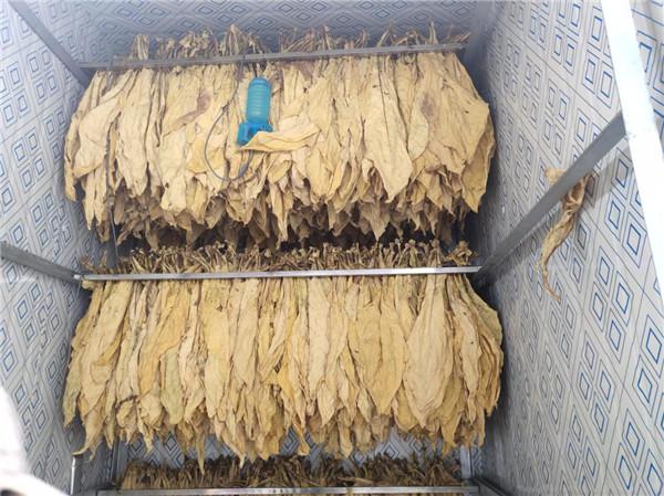 福建近4.5万个燃煤烤烟房或面临改造 空气源热泵烘干为烟农增收