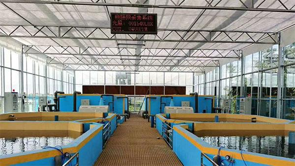 浙江加州鲈鱼恒温养殖项目,选择同益空气能